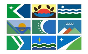 Duluth Flag Project